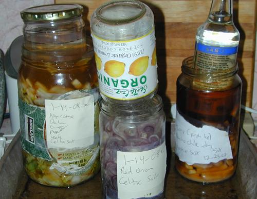 Ferments in Jars