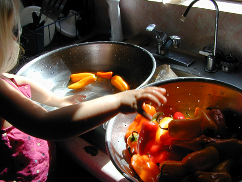 Miriam washing peppers