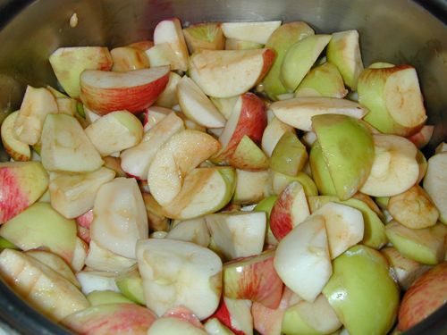 Apples ready for the cook pot