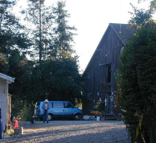 Peterson's Farm Barn