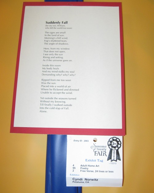 My poem, Suddenly Fall, wins 3rd place!